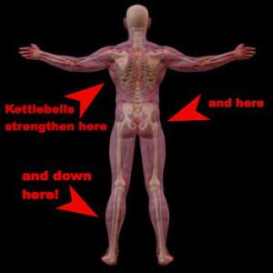 kettlebells-anatomy