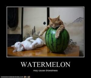 watermelonsleepy